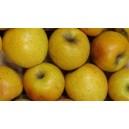 Pommes Goldrush le kg